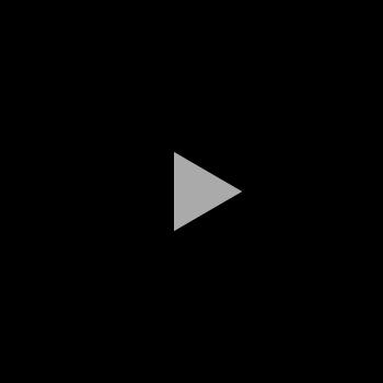 Video abspielen